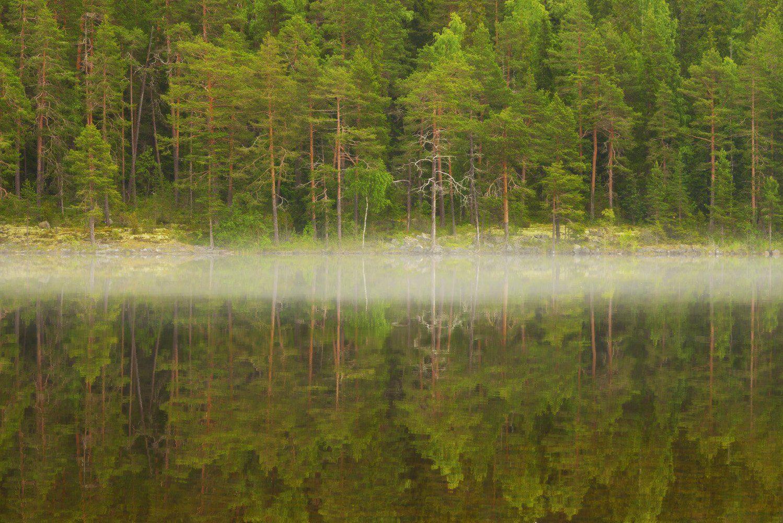 онежское озеро, штиль, отражение, туман, Сергей Седов