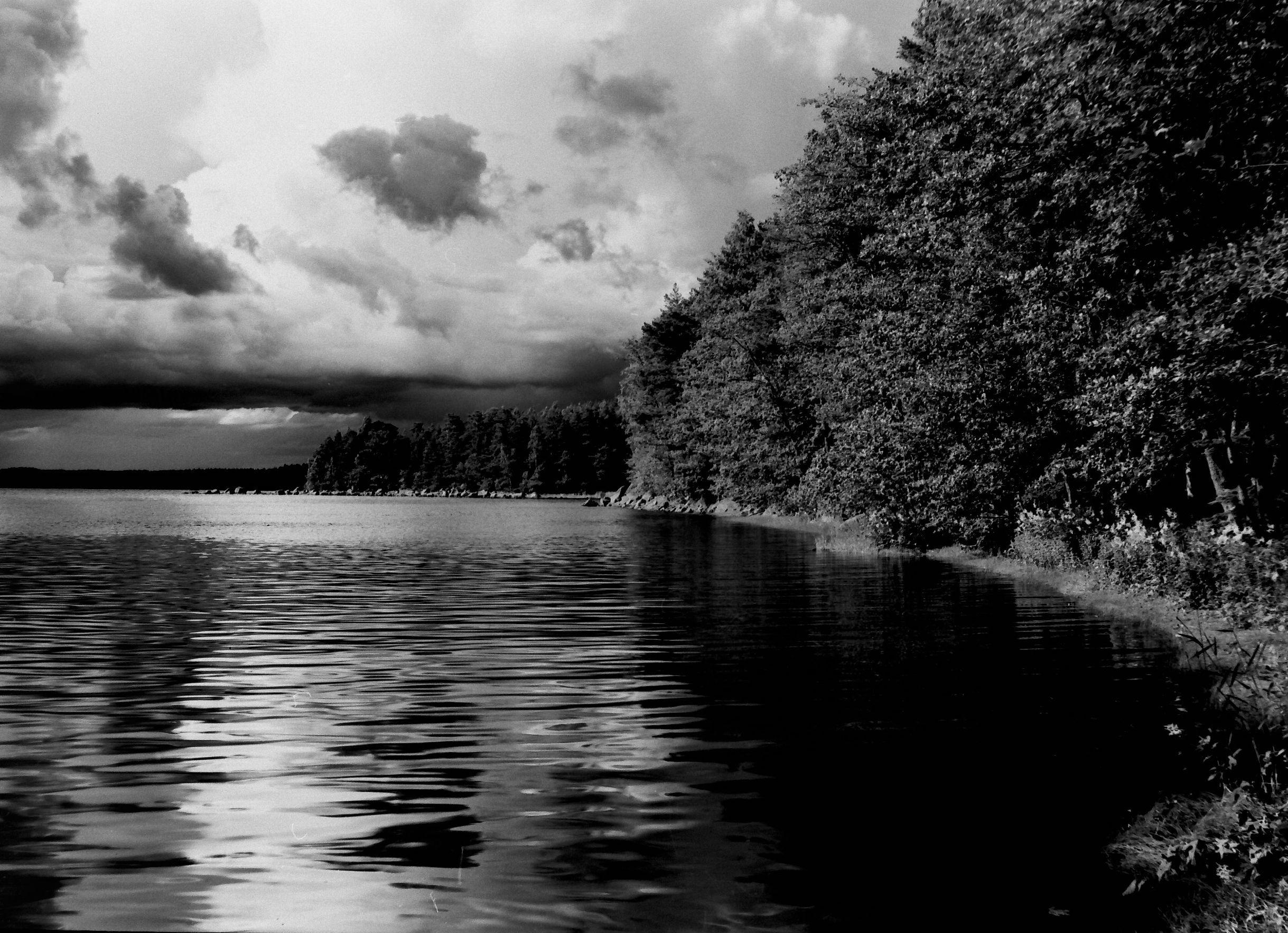 пленка, черно-белая фотография,, Домарацкий Иван