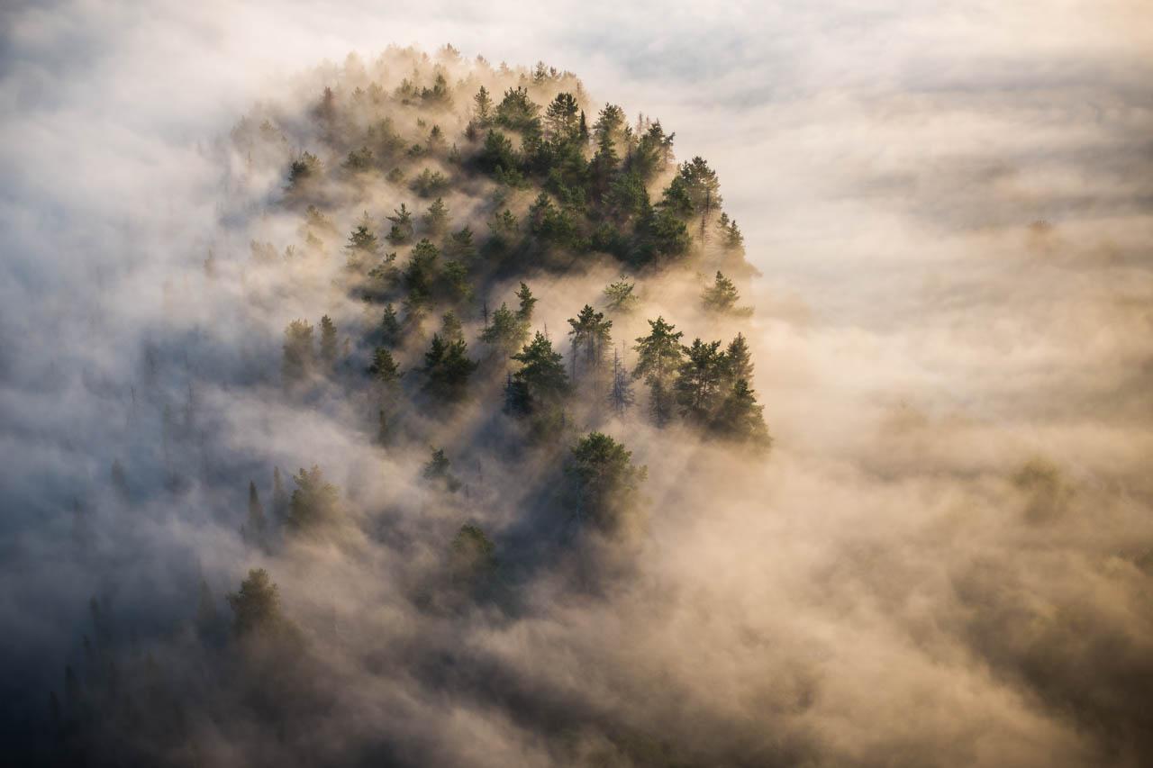 туман, пейзаж, лес, высота, облака, рассвет, Коровин Кирилл