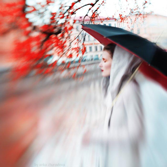 осень, красный, зонт, клен, хокку, листья, дождь, anka zhuravleva