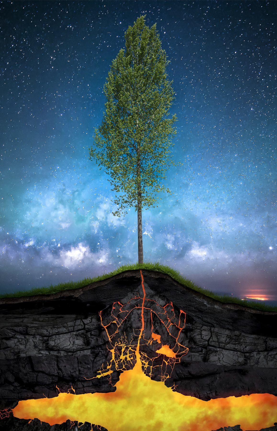 spring, tree, sky, night, lava, magma, energy, nature, concept, Antonio Bernardino