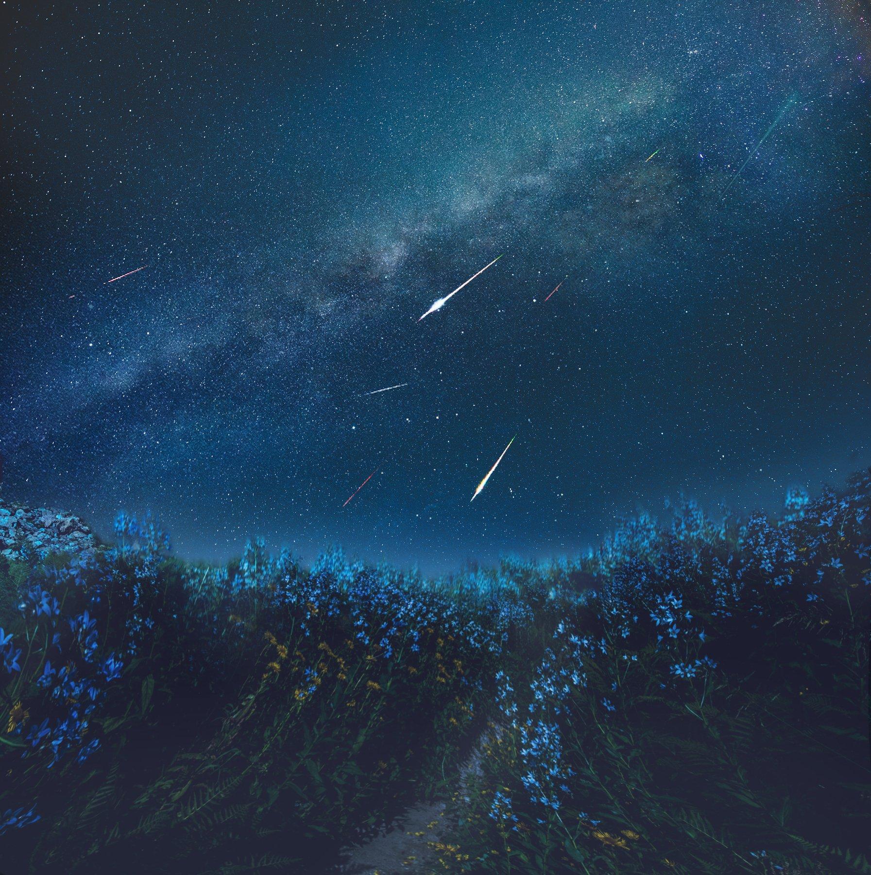 Звездопад, ночной пейзаж, астрофотография, Оксана Сироткина