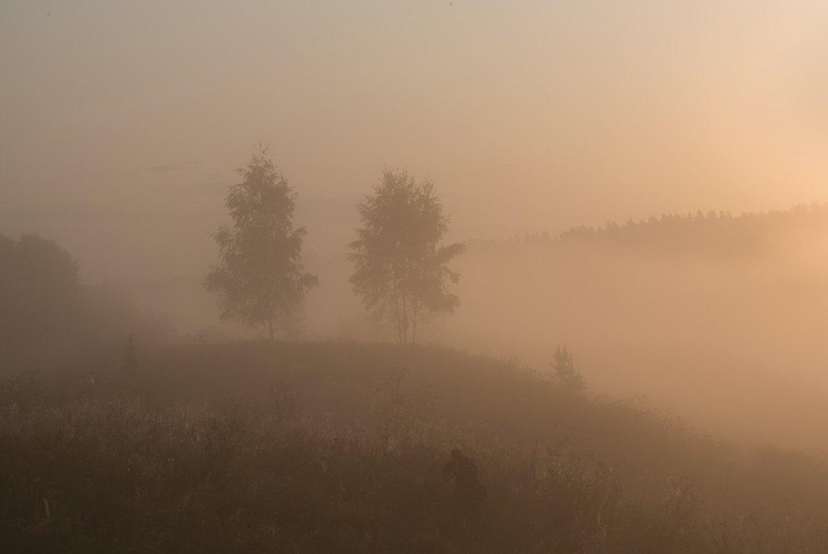 россия, природа, река, угра, смоленская область, август, 2017, рассвет, туман, nikon, лодка, пейзаж,, Денис Щербак