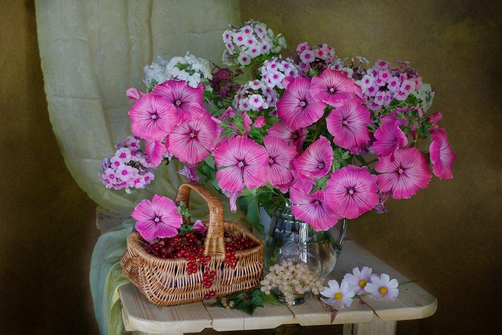С цветами лаватеры Вера Павлухина