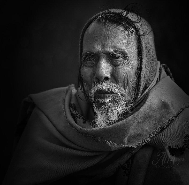 старик, дед, бедуин, платок, седина, борода, морщины, вгляд, Alla Sokolova
