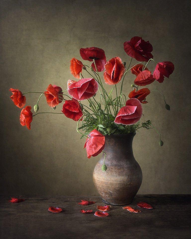 натюрморт, художественное фото, лето, букет цветов, красные маки, Ирина Приходько