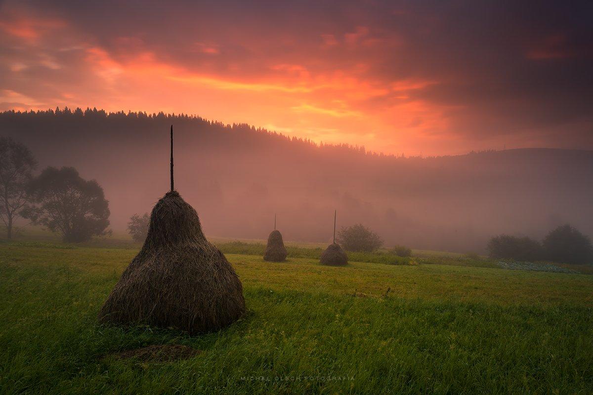 fog, dawn, ukraine, mountains, туман, украина, утро, горы, Michał Olech