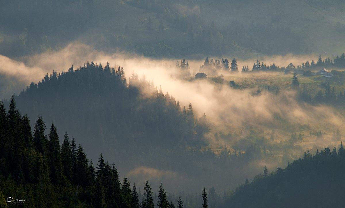 рассвет., , туман., , карпаты., , горы., Leonid