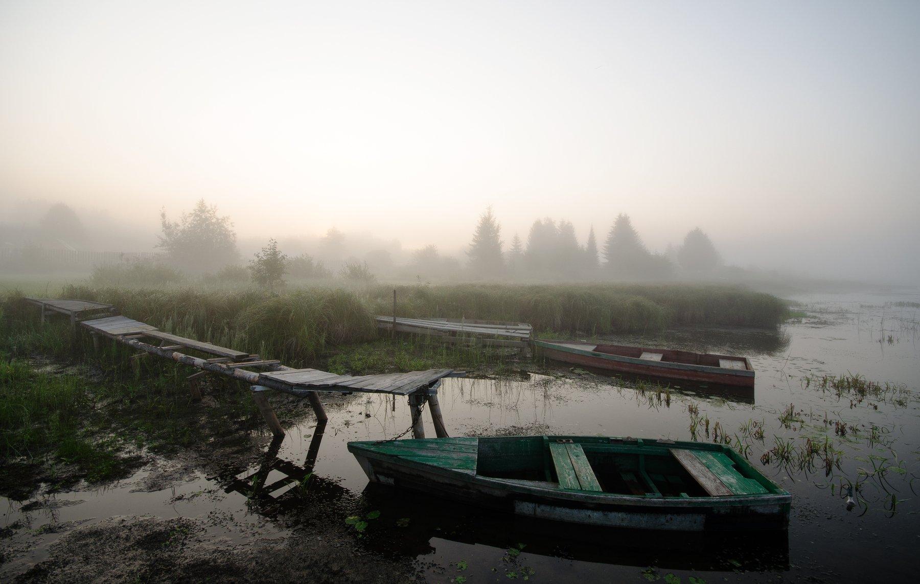 прохлада,утро,осень,рассвет, Карепанов Евгений