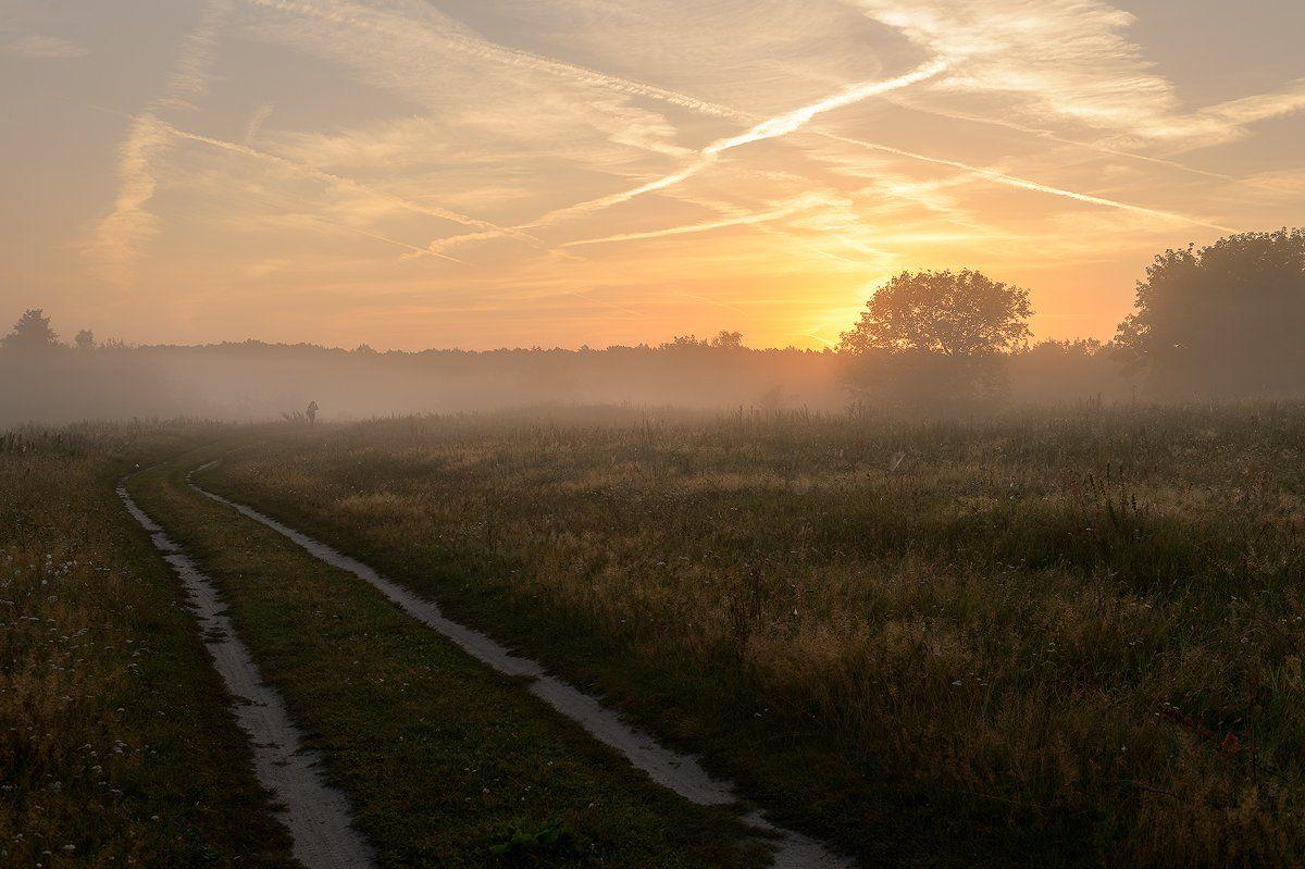 пейзаж,природа,рассвет,утро,туман,россия,лето,красота,дорога,человек, Юлия Лаптева
