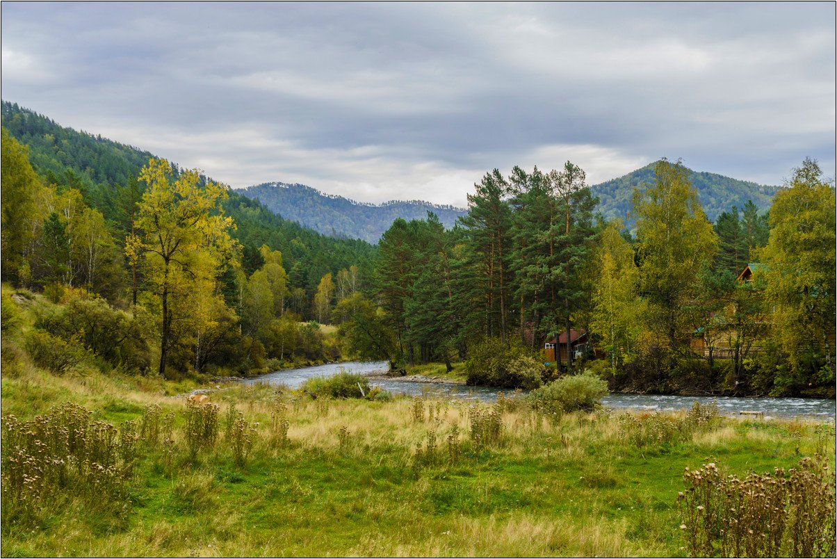 пейзаж, осень, река, Горный Алтай , Александр Потапов