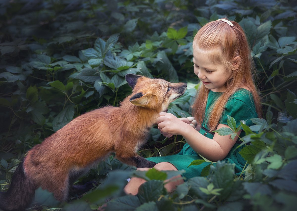 girl, fox, forest, summer, red-haired, friendship, Олеся Курсанова