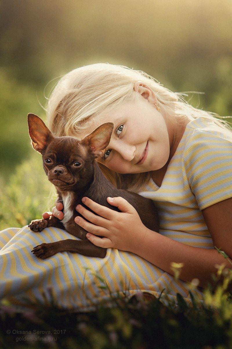 дети, девочка, лучшие друзья, чихуахуа, собака, лето, Оксана Серова