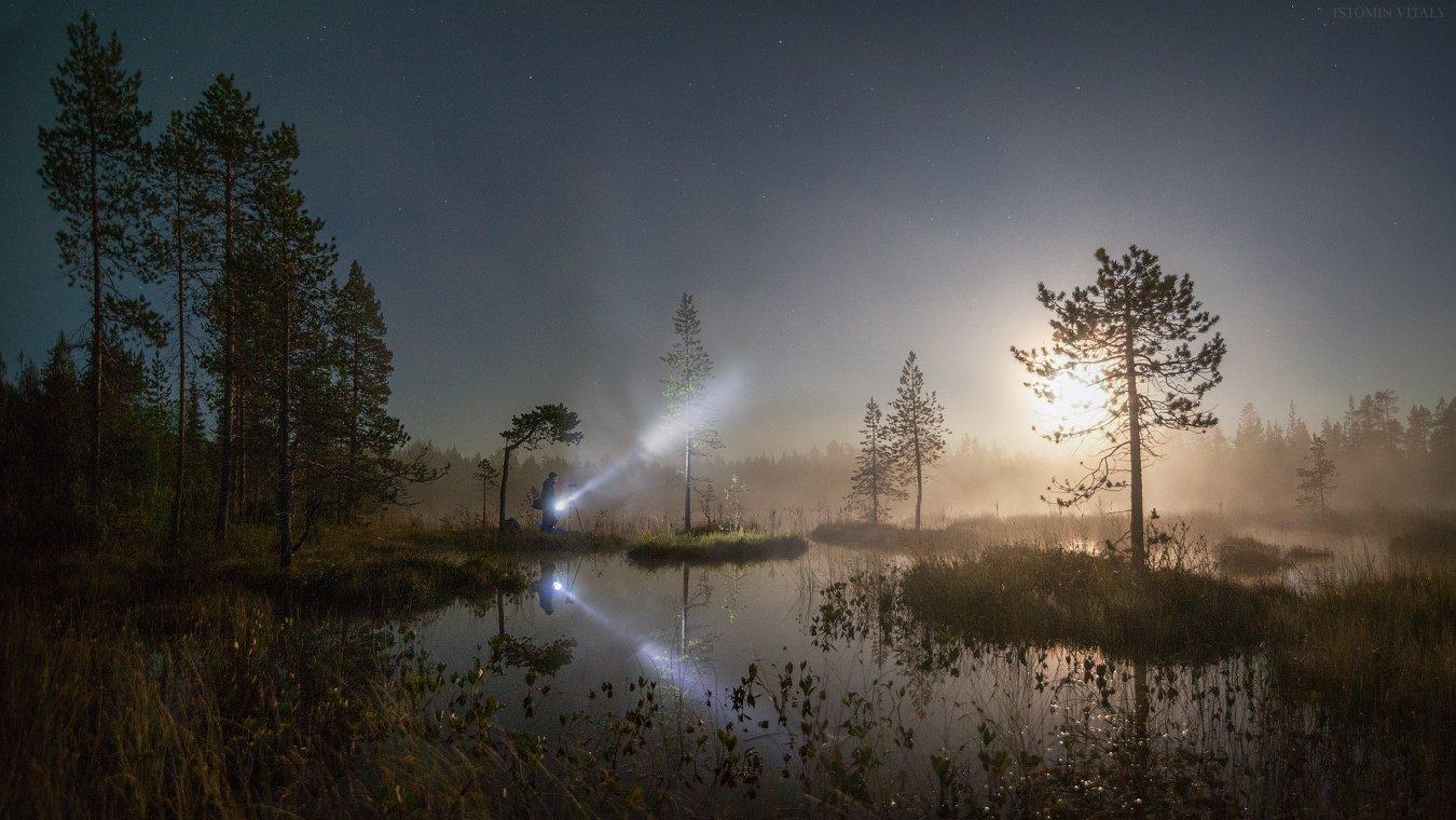 пейзаж,человек,ночь,луна,россия,свет,иуман,звезды,панорама,перспектива,деревья,болота,тишина, Истомин Виталий
