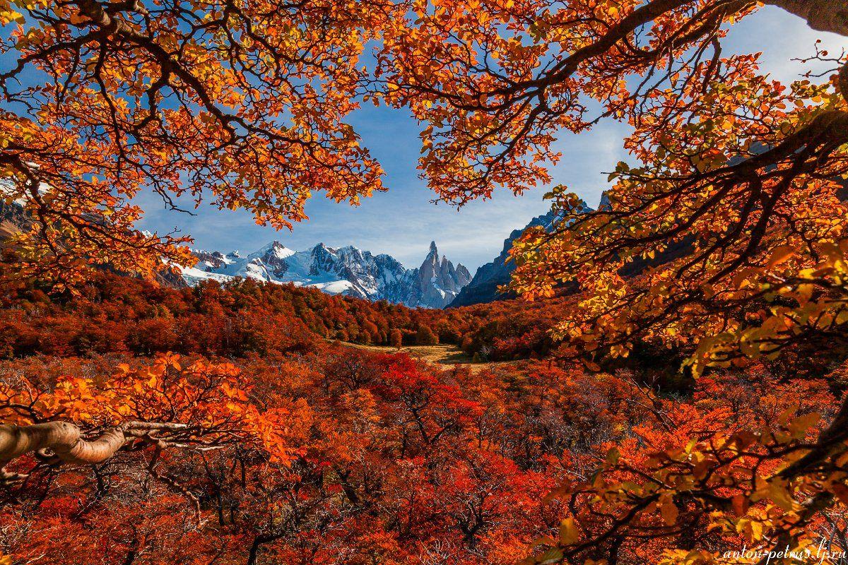 патагония, горы, рассвет, аргентина, Антон Петрусь