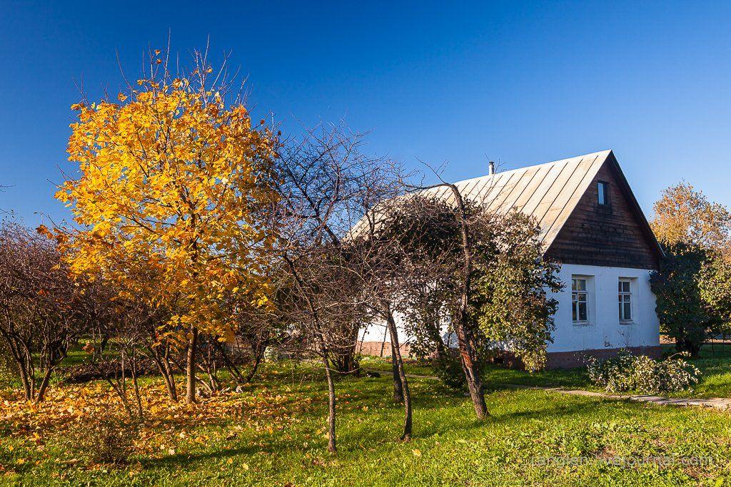 коломенское, москва, осень, золотая, небо, пейзаж, Иван Губанов