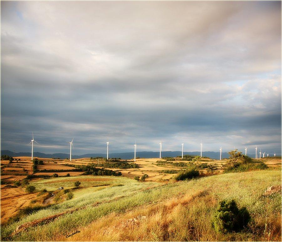 испания, утро, ветряки, поле, Lampadina (Svetlana Maximova)