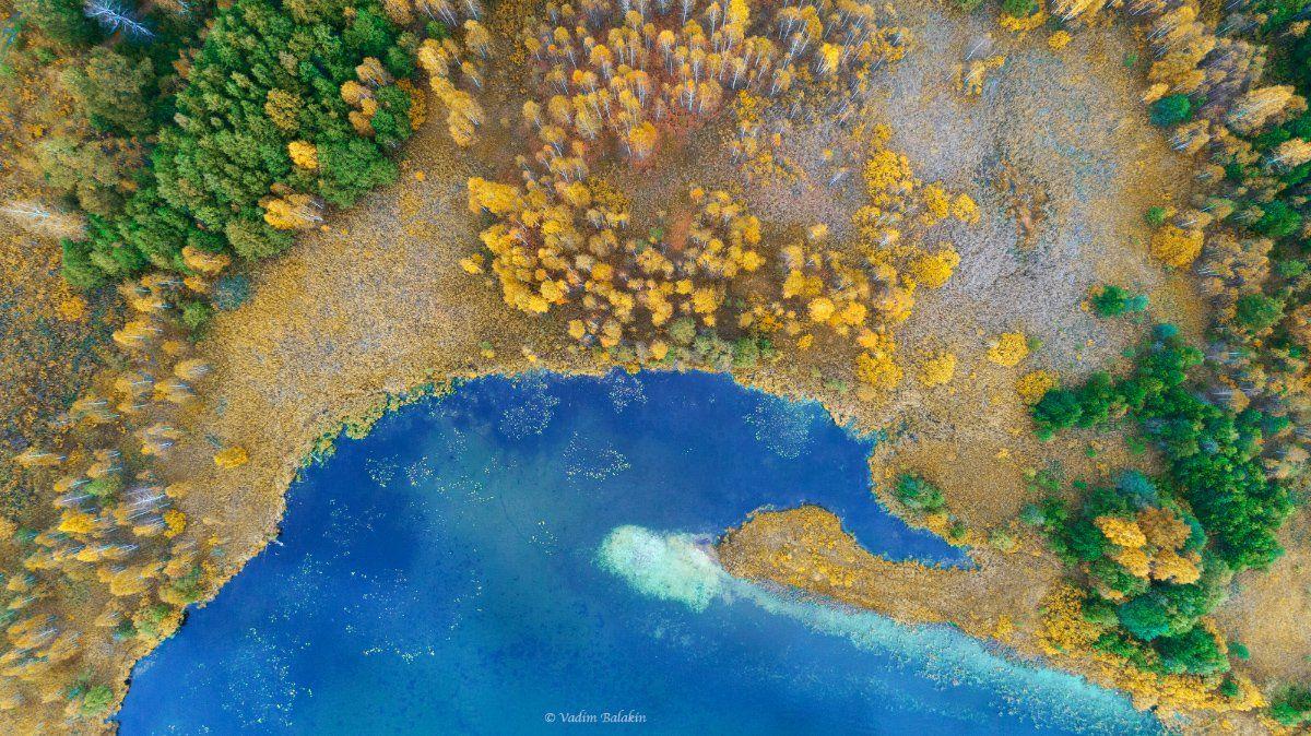 осень, средний урал, аэрофотосъемка, озеро, лес, осенний лес, урал, абстракция, Вадим Балакин