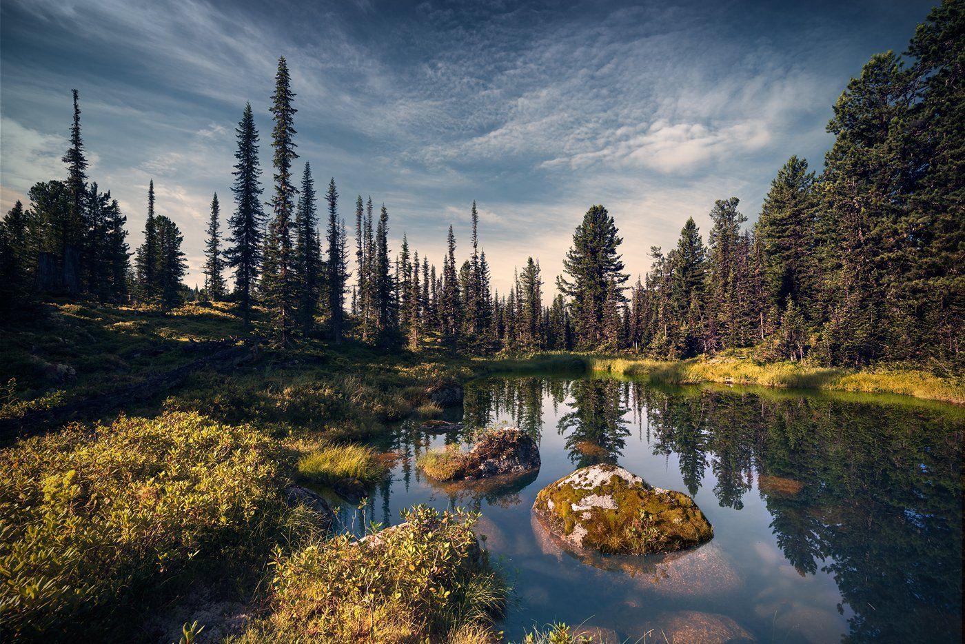 landscape, nature, taiga, lake, forest, rocks, cold, spectacular, пейзаж, природа, тайга, лес, глухая, красивая, озеро, камни, холодное, pure, transparent, morning, moss, чистое, прозрачное, утро, мох, siberia, ergaki, сибирь, ергаки, красноярский край, Дмитрий Антипов