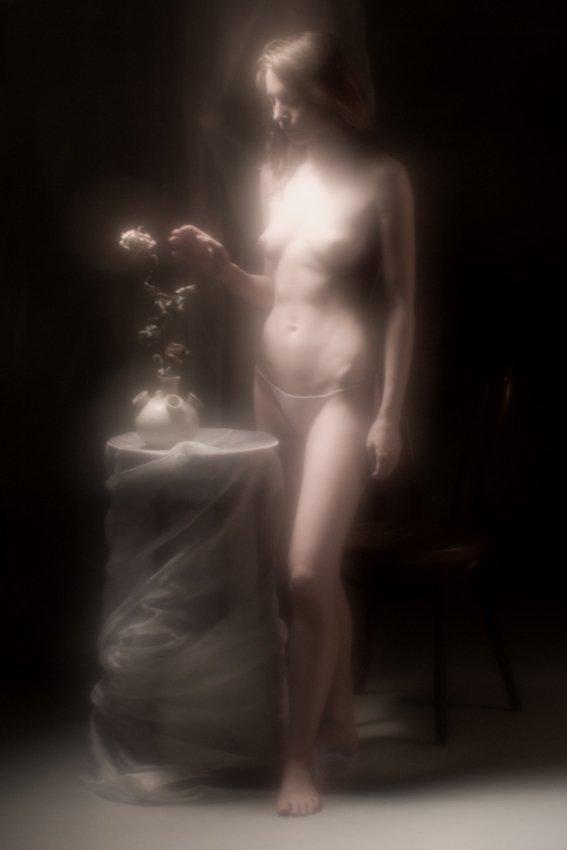 иришка, роза, монокль, Vincent