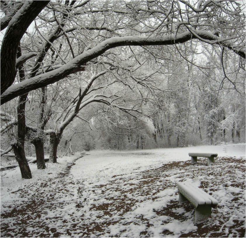зима, снег, берег, КарОл