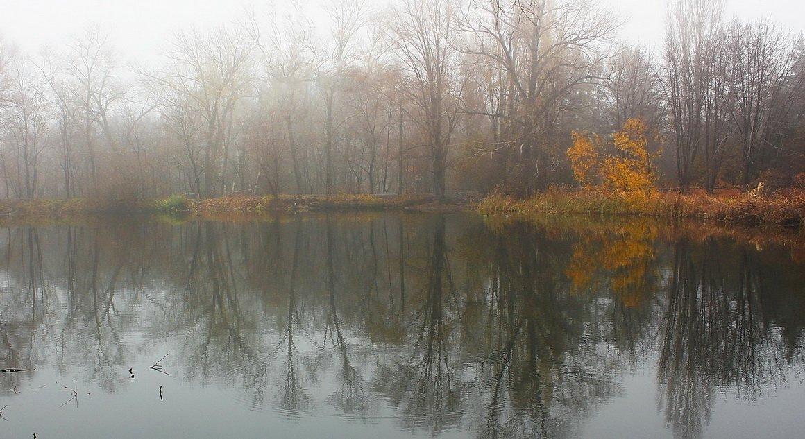 озеро, осень, Михаил
