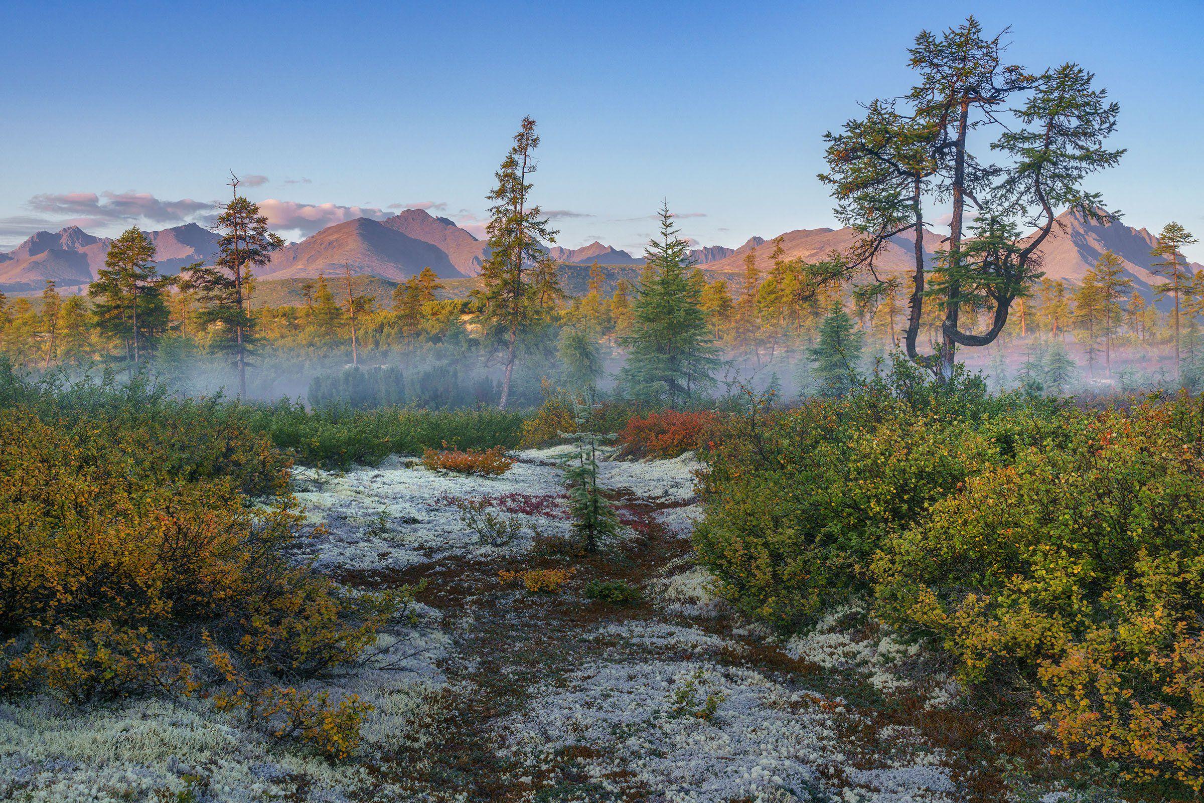 Колыма, озеро Джека Лондона, туман, осень., Владимир Рябков