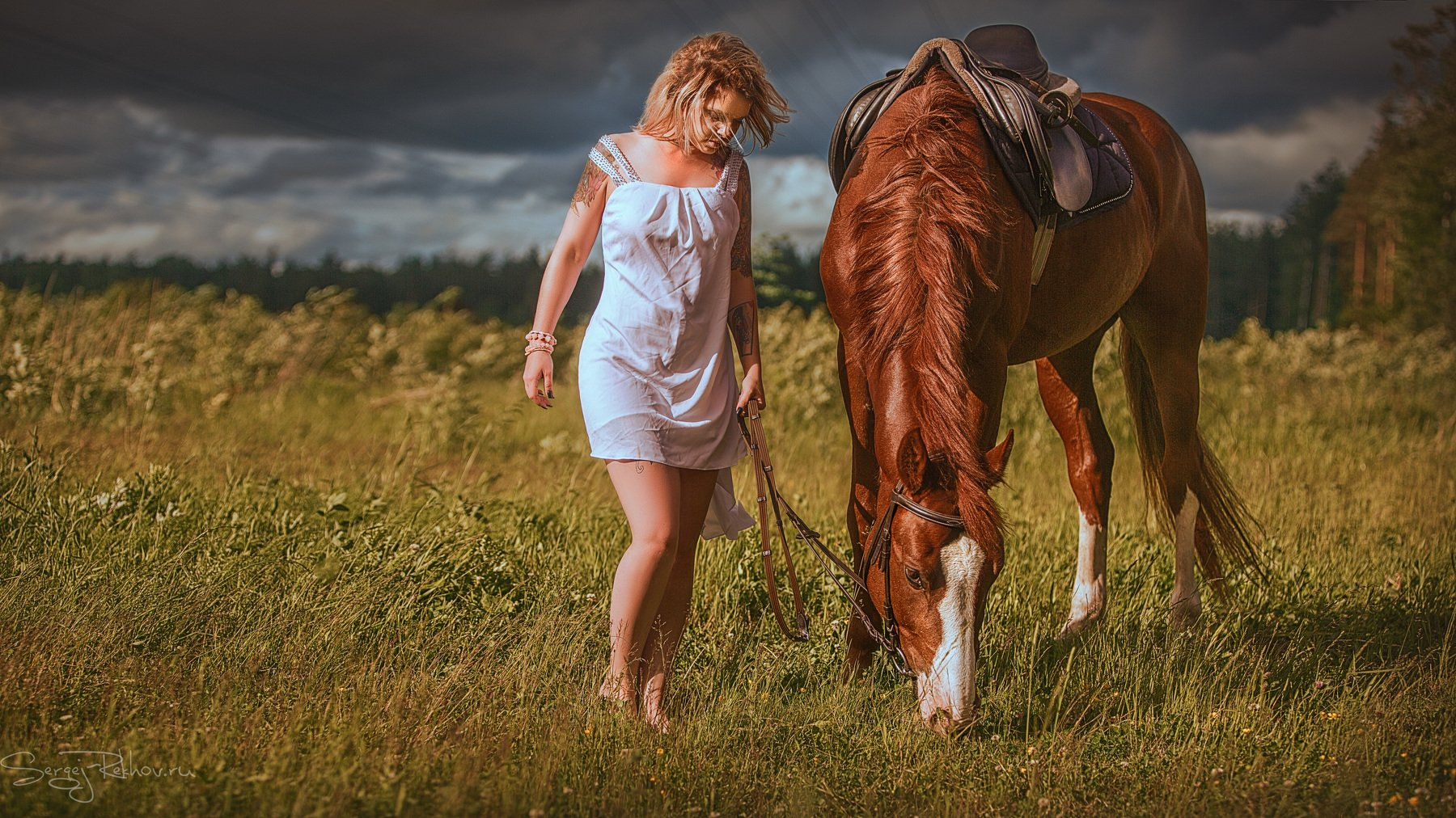 конь, девушка, конюшня, гроза, деревня, рехов, сергейрехов, Сергей Рехов