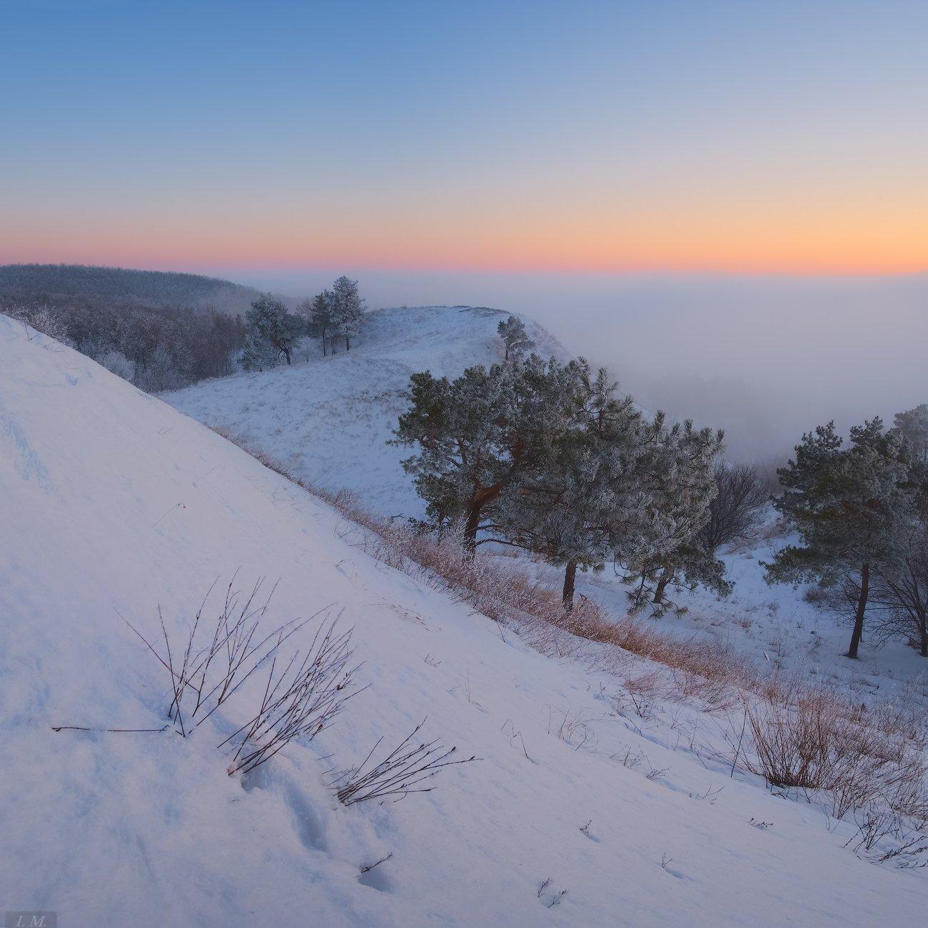 evening, fog, Landscape, light, nature, snow, sunset, Ukraine, white, winter, вечер, закат, зима, мороз, пейзаж, природа, свет, снег, сосны, сумерки, туман, Украина, холмы, hills, trees, colors, twilight, I'M