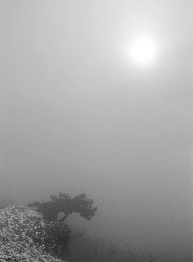 крым, зима, туман, селнце, икар, Александр Андреев