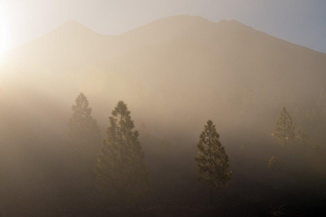 тенерифе,утро,рассвет,лас каньядас дель тейде,туман, Александр Константинов