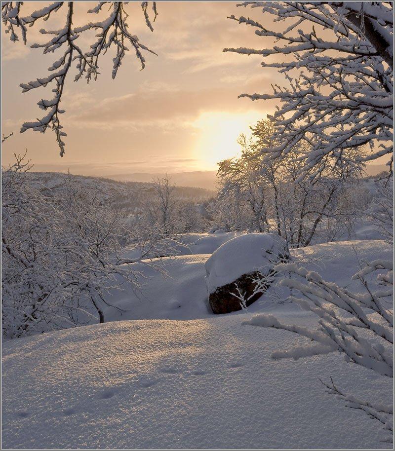 солнце, сопки, снег, следы, кольский, Lara