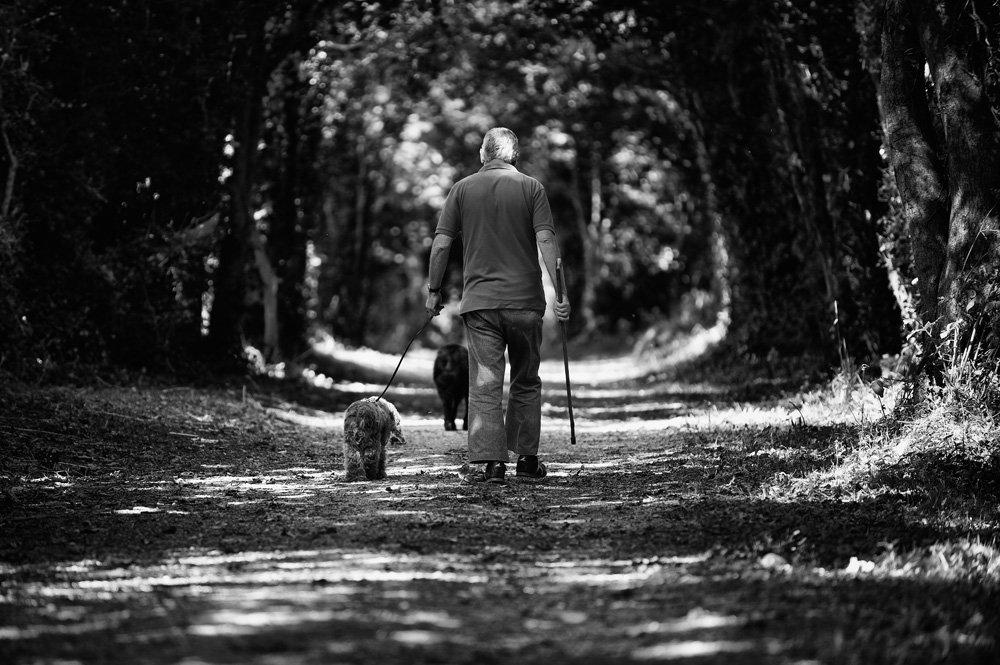 собака, мужчина, тропинка, парк, прогулка, Konstantin Maskalenko