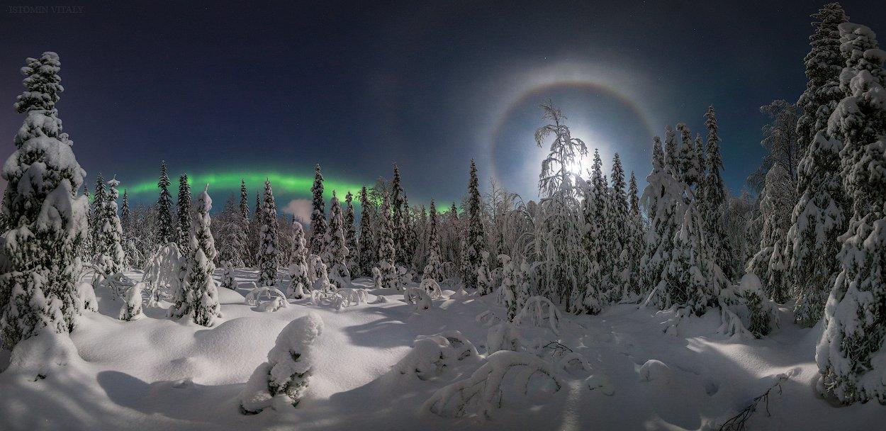Апатиты,россия,мурманская область,пейзаж,панорама,лес,зима,ночь,гало,луна,звезды, Истомин Виталий