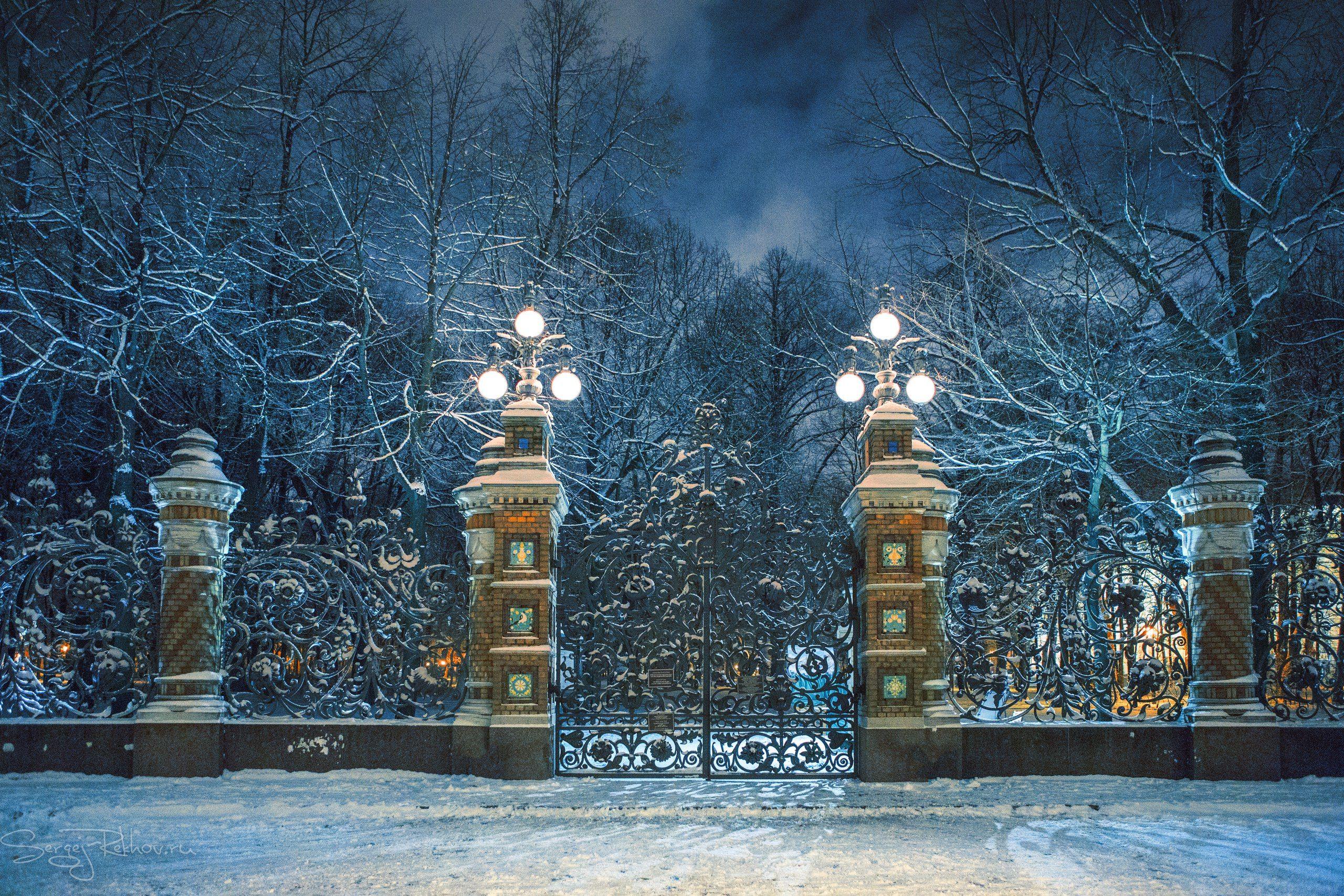 питер, михайловский сад, ночь, зима, снег, рехов, сергейрехов, rekhov, sergejrekhov, Сергей Рехов