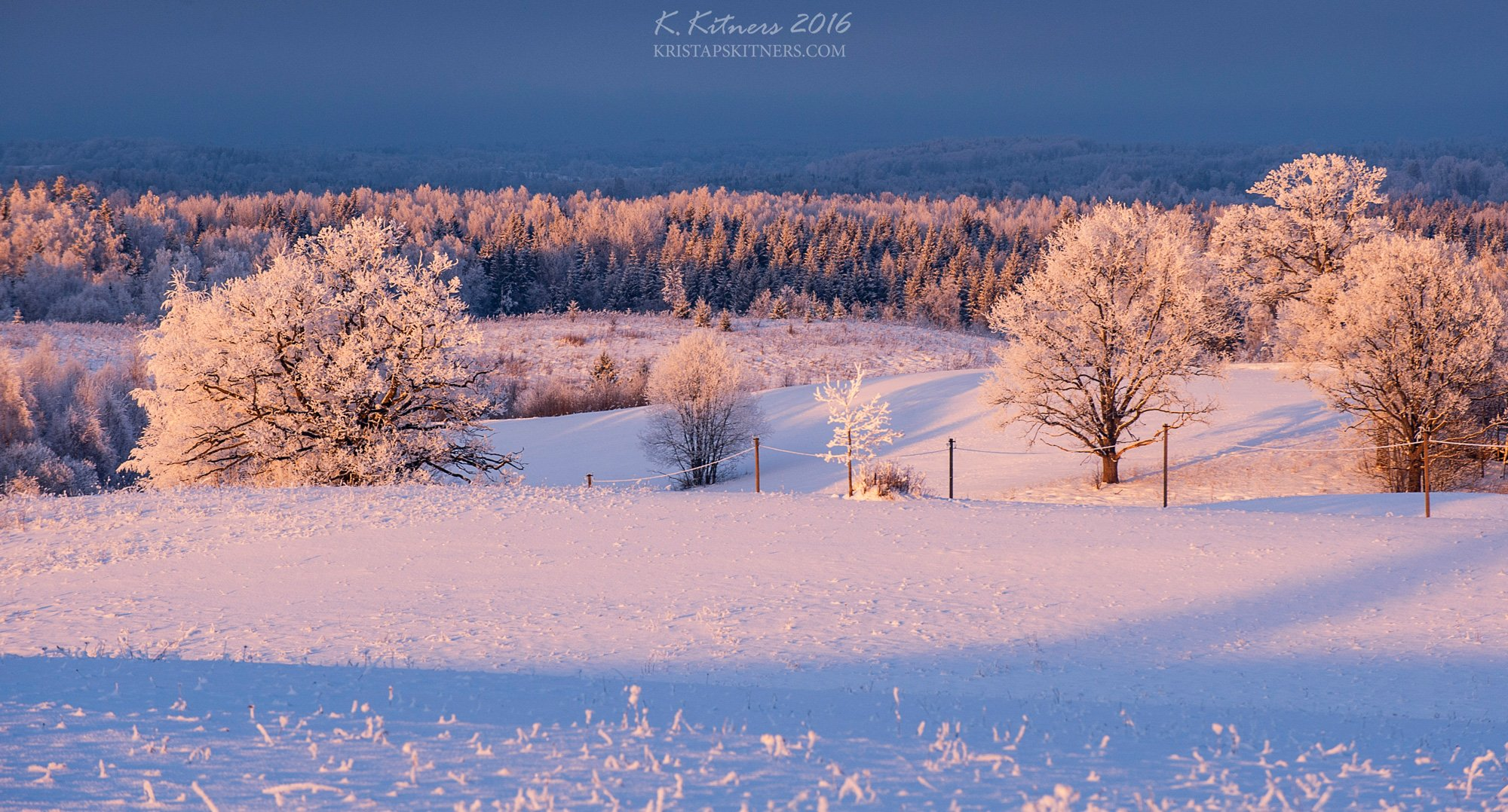 snow frost forest tree blue white winter sky clouds latvia landscape field sun sunset cold, Kristaps Kitners