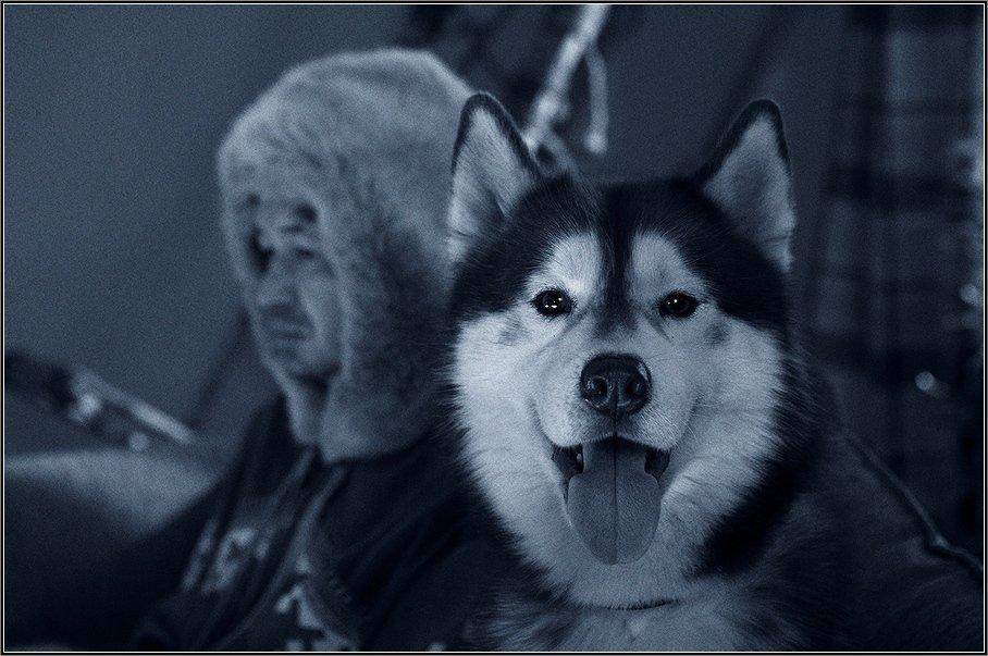 , Aleetet www.loft-photo.ru