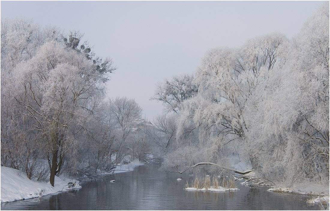 зимнее, утро, Николай