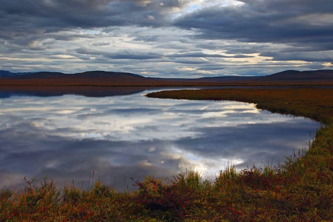 чукотка, пейзаж, природа, небо, облака, растения, сопки, осень, россия, север, тундра, цвет, свет, озеро, вода, берег, отражение,, Sergey Shulga
