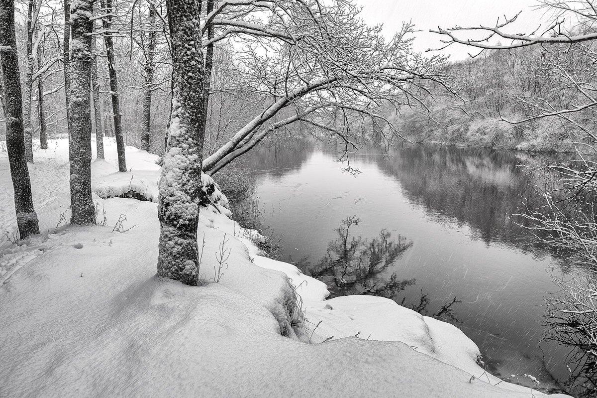черно-белое,пейзаж,природа,снег,b/w,россия,зима,декабрь, Юлия Лаптева