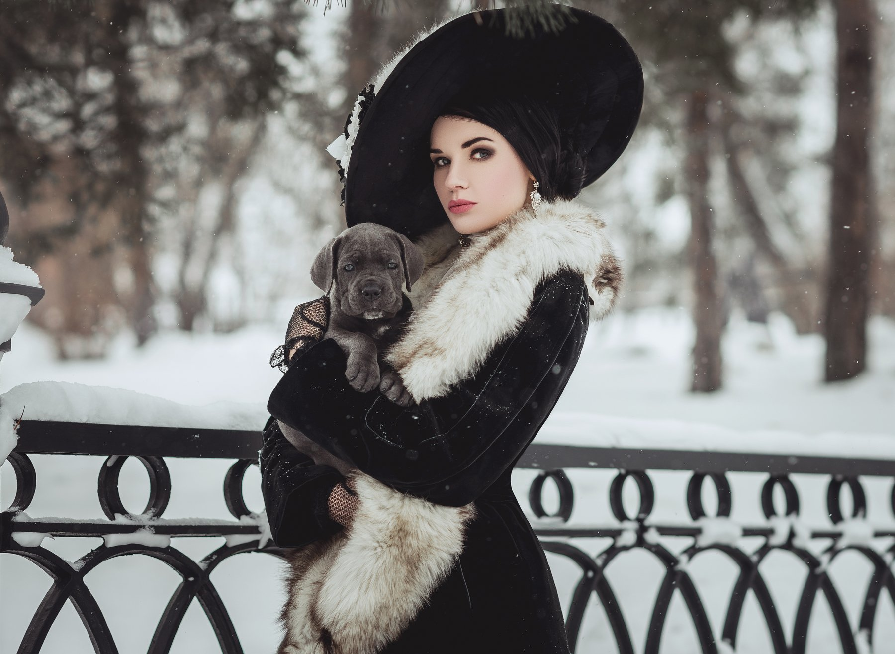 , Липкина Диана