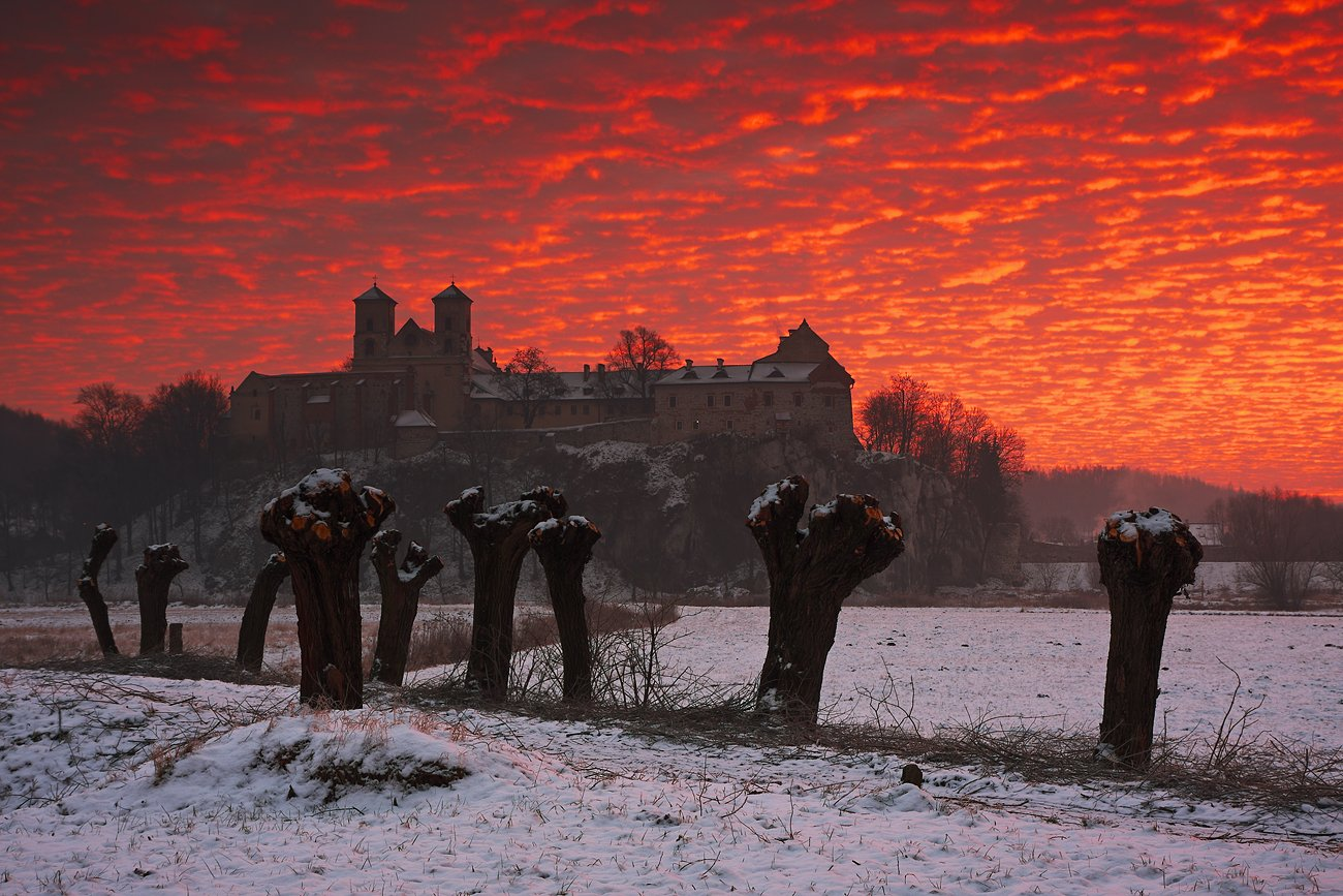 colors, sky, red, clouds, morning, sunrise, tyniec, road, willows, monastery, Jacek Lisiewicz