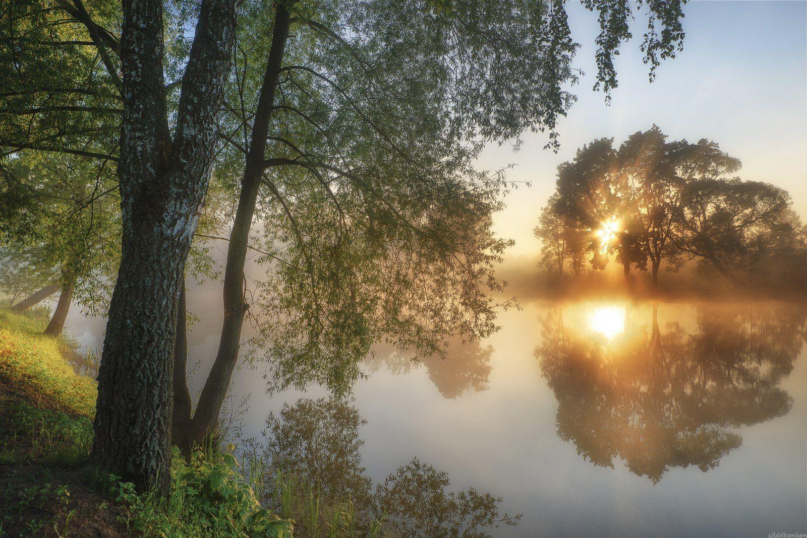 пейзаж туман никон, Морозов Юрий