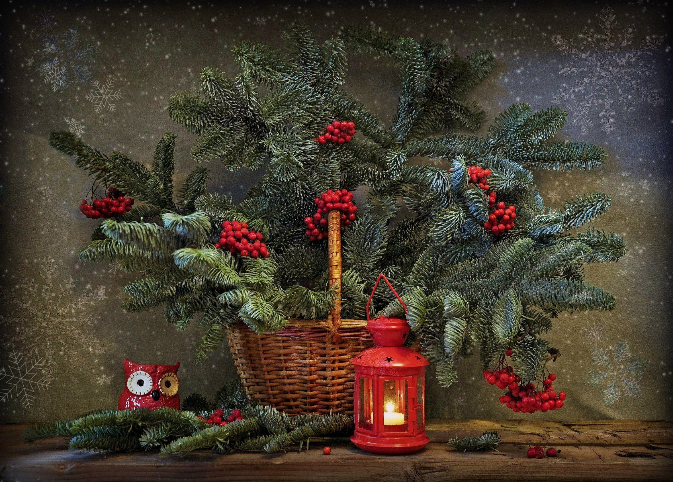 зима новый год елка праздник, Марина Орлова