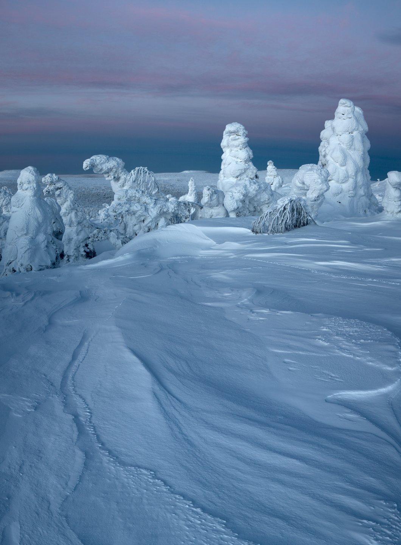 зима, снег, деревья, утро, рассвет, фактура, заструги, фигуры, монстры, урал, горы, антон селезнев, Антон Селезнев