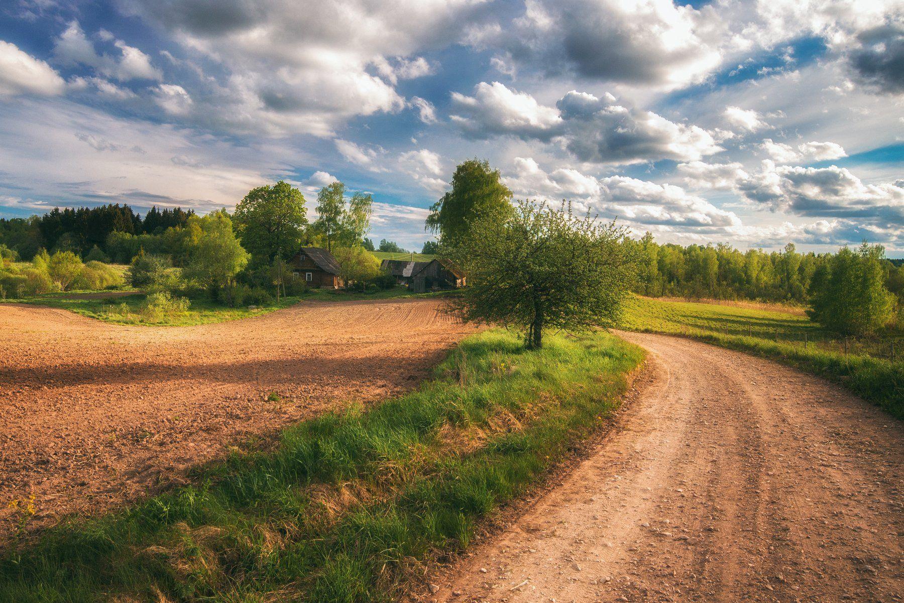 landscape,summer,latvia,road,farm,пейзаж,деревня,лето, Olegs Bucis