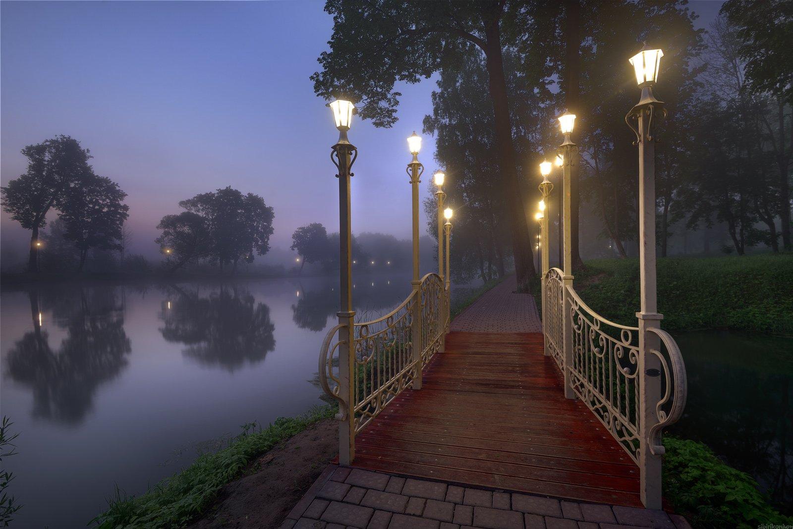 туман утро пейзаж , Морозов Юрий