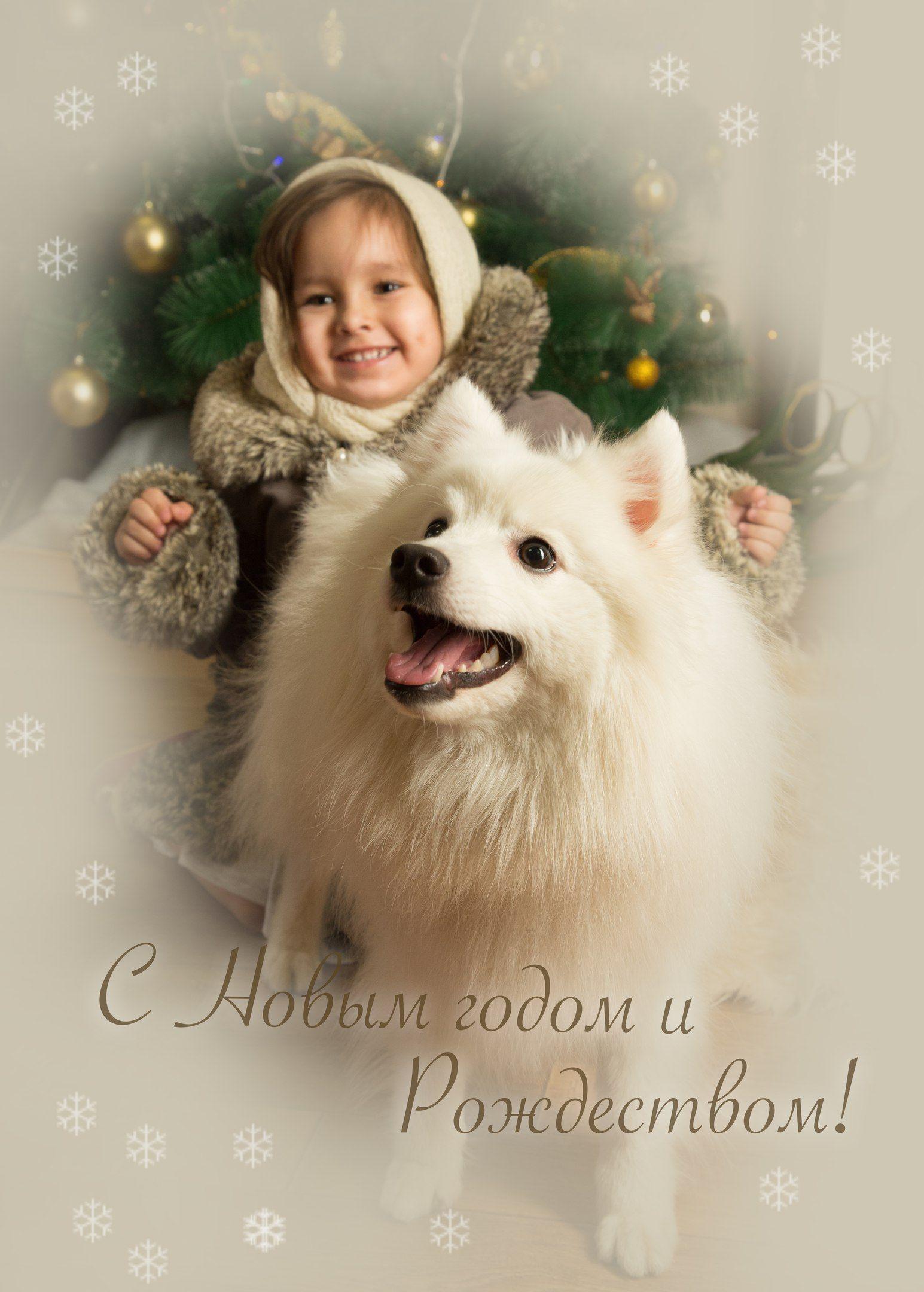 Собака, девочка, открытка, поздравление, новый год, рождество , Комарова Дарья