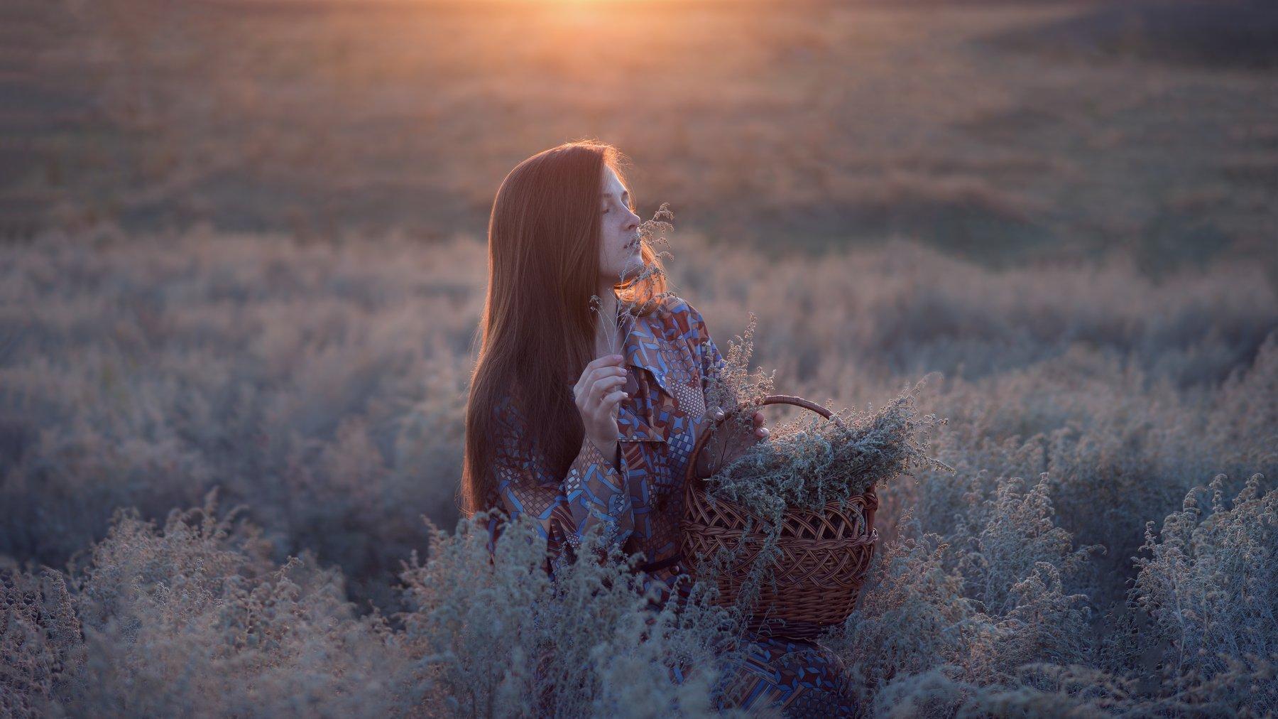 девушка, рассвет, полынь, первая заря, деревня, солнце, Катарина Винниченко