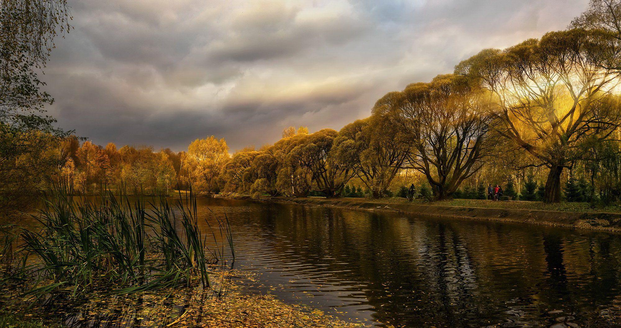 осень, пруд, городской парк, опавшие листья, облака, лучи, заходящее солнце, ивы, GaL-Lina